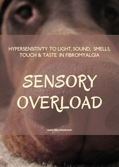 Sensory Overload: Hypersensitivity To Sensory Stimuli In Fibromyalgia