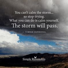 """""""You can't calm the storm… so stop trying. What you can do is calm yourself. The storm will pass."""" — Timber Hawkeye"""