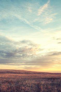 Nature Wild Grassland Skyline #iPhone #4s #wallpaper