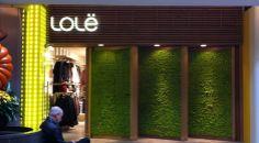 Atelier Lolë / Bayview Village 2901 Bayview Avenue Toronto, ON, M2K 1E6 - CANADA 647-341-2205 Toronto, Canada, Beauty Shots, Window Art, Go Green, Visual Merchandising, Succulents, Windows, World