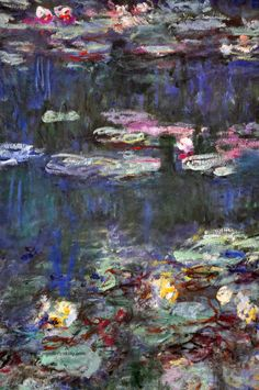 photo of Monet's Water Lily paintings in L'Orangerie, Paris