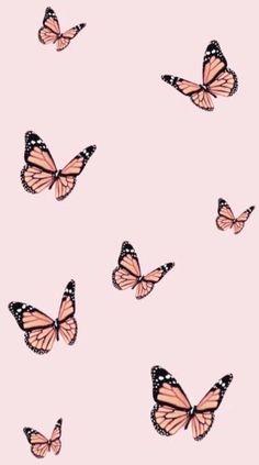 Simple Iphone Wallpaper, Iphone Wallpaper Vsco, Butterfly Wallpaper Iphone, Homescreen Wallpaper, Iphone Wallpaper Tumblr Aesthetic, Iphone Background Wallpaper, Aesthetic Pastel Wallpaper, Aesthetic Backgrounds, Aesthetic Wallpapers