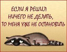 Юмор | смешные картинки  |на русском | позитив | настроение |  работа | отдых |лень