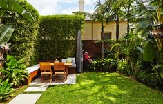 Bondi tropical style landscaping