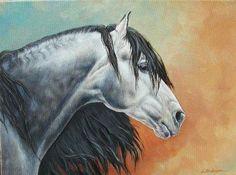 Tallisman II_Andalusian Stallion