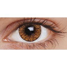 Eye2eye: BROWN 1TONE