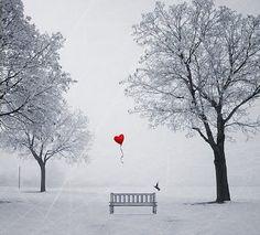 Balão-Coração-Banco-Praça-Sozinho-Árvores-Pássaro.jpg (400×362)
