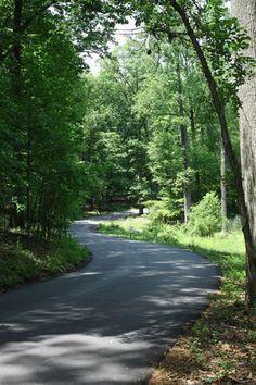 Driveway Entrance into Trinity's Campus