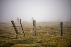 Barbed wire by Ertürk Buluç on 500px