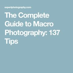 The Complete Guide to Macro Photography: 137 Tips