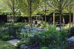 gorgeous lilac and white planting