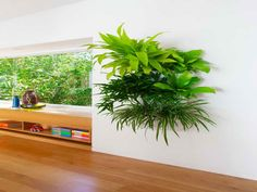 Indoor Living Wall Planter canada life building intoronto - an indoor living wall was created