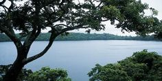 Ecoturismo campesino en Los Tuxtlas. Al llegar, no podrás imaginar cuánto vas a disfrutar la selva, siempre verde, en la sierra de Los Tuxtlas, al sur de Veracruz.