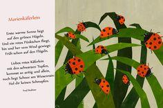 Marienkäfer Gedicht Reim Kindergarten Erzieherin Kita Frühling Sommer Käfer