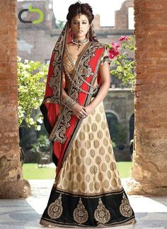 gorgeous bridal lehenga with intricate detailing! loving the black on red and brown-beige contrast!