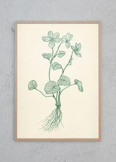 Flora Danica #03 designet af Sigrid Benedikte Strøyer   Just Spotted