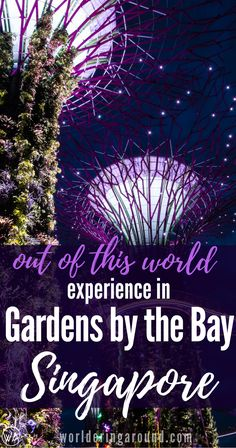 Discover amazing Gardens by the Bay in Singapore - top places to see and the best photo spots! Singapore travel, What to visit in Singapore in one day. Things to do in Singapore in one day, Singapore top places to visit, Food in Singapore, Singapore bucket list, top places in Singapore, Asia, Marina Bay Sands, Gardens by the Bay, infinity pool #Singapore #Asia #gardensbythebay | Worldering around