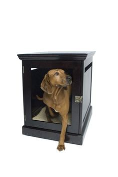 $479.14-$499.99 DenHaus TownHaus Indoor Dog House and End Table, Espresso, Large - Comfort for the whole family is easy with the TownHaus, a finely-crafted end table that does double duty as a home for your dog. The perfect complement to any room, this skillfully crafted end table brings beauty to your home, comfort to your life and peaceful rest for your dog. Linear frame, removable door and mol ...