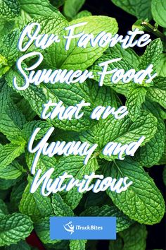 Click to see our top ten lowest calorie foods that stimulate weight loss, hydration, and add some summer flair to your kitchen! Healthy Foods, Healthy Recipes, Low Calorie Recipes, Top Ten, Summer Recipes, Plant Leaves, Weight Loss, Kitchen, Plants