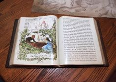 A book inside Maurice's Cottage in New Fantasyland at Magic Kingdom. Optimism, Magic Kingdom, Cover, Books, Libros, Livros, Book, Blanket, Book Illustrations