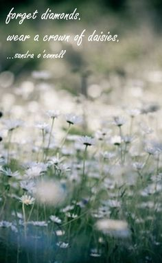forget diamonds. wear a crown of daisies. #daisies #flowers #quote #diamonds #crown