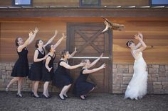 (Bride - Bouquet + Cat) * Photoshop = Brides Throwing Cats. It's all a bit of fun, photoshopping...