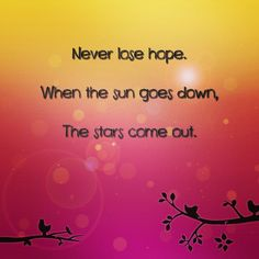 Never lose hope. When the sun goes down the stars come out. #quote