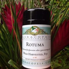 Rotuma oil is a Polynesian skin oil has been used for over 1500 years to beautify the skin and hair. Made without heat or preservatives. Scripture Crafts, Best Essential Oils, Carrier Oils, Oils For Skin, Diy Crafts For Kids, Face And Body, Natural Skin Care, Aromatherapy, Harvest