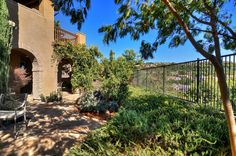 Taking full advantage of the picturesque views, the backyard is secluded featuring a flagstone patio for entertaining and numerous fruit trees including avocado, apricot, peach, pomegranate, blueberry, orange, lemon, grapefruit and bearss lime. | 18 Salvatore, Ladera Ranch, CA