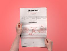 Ambrosia Newsletter on Behance
