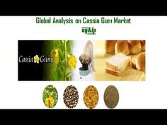 "Visit: <a href=""http://www.ambagums.com/products/cassia-powder/"">http://www.ambagums.com/products/cassia-powder/</a> Cassia gum powder is manufactured from the endosperm of cassia obtusifolia or Cassia tora and has several uses in industry. It is used as a food additive and beverage as well as in the manufacturing industry. It is used as a gelling agent, stabilizer as well as a thickener."