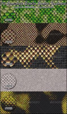 10 Seamless Snake Scales Textures