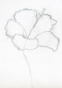 Simple Drawings Of Hibiscus Flowers ~ Jus 4 kidz Easy Flower Drawings, Flower Drawing Tutorials, Flower Sketches, Easy Drawings, Easy Sketches, Drawing Ideas, Drawing Tips, Hibiscus Flower Drawing, Hibiscus Flowers