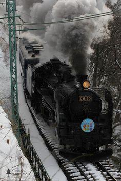 .Japanese Train