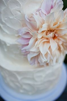 ok, maybe this is the perfect cake (and within the budget) - simple, buttercream instead of fondant, one flower, done.