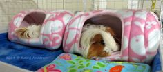 Comfy bungalows for cage