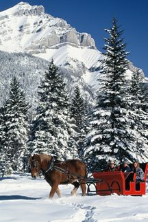 Lovely weather for a sleigh ride together with you.....I have been waiting 32 1/2 years to have a sleigh ride like this with Kent...could this be the year?