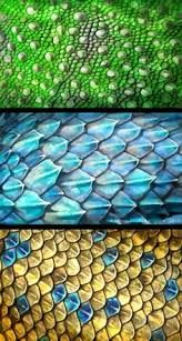 Image result for how to draw dragon scales