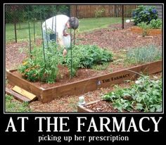 Holistic Health: At the Farmacy, picking up her prescription.