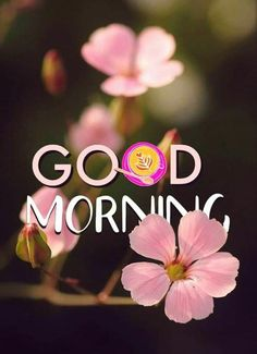 Good Morning Saturday Images, Latest Good Morning Images, Good Morning Beautiful People, Good Morning Happy Sunday, Good Morning My Friend, Good Morning Sunshine, Good Morning Picture, Morning Pictures, Good Morning Greeting Cards
