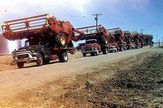 Blast from the past - 1958 Western Nebraska wheat harvesting crew