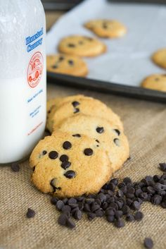 Yes, these Keto Chocolate Chip Cookies are our second go at chocolate chip cookies, and I might add, you should expect a third made of coconut flour! Here is the thing, chocolate chip cookies are the perfect cookie and probably the most liked by people everywhere, so of course it had to be done, again. …