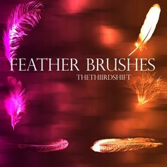 Feather Brushes by thethiirdshift Photoshop Brushes, Photoshop Actions, Lightroom Presets, Overlays, Cool Photos, Photo Editing, Feather, Graphic Design, Movie Posters