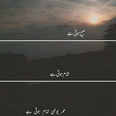 Urdu Funny Poetry, Poetry Quotes In Urdu, Best Urdu Poetry Images, Love Poetry Urdu, Best Quotes In Urdu, Urdu Funny Quotes, Qoutes, Allah Quotes, Mixed Feelings Quotes