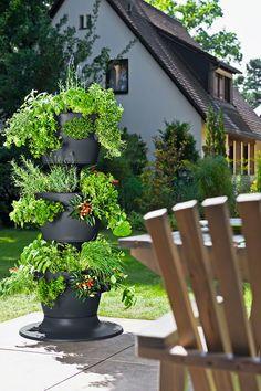 Myymme Lechuzan kolmekerroksisia altakasteluruukkuja, joihin mahtuu kokonainen kasvimaa yhteen pylvääseen! Täytä mansikantaimilla, niin lapsilla on popsittavaa koko kesän. Ruukku 195e + taimet
