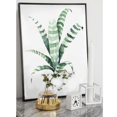 Ordered new prints in A3 of this pretty Tiger Plant #wallart #interiordesign #beach #summer #leaf #tropical #etsy #etsyfinds #cactus #cactuslover #tropical #tropic #summer #poster #print #design #annetweelinkdesign #botanical #interior #style #lifestyle #like4like #tagsforlikes #painting #paint #poster #postcard #watercolor #urbanjungle #instagood #instaart #green #styling #style