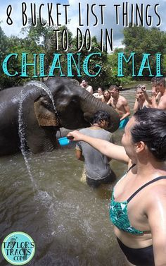 8 Bucket List Things To Do in Chiang Mai Pin www.taylorstracks.com