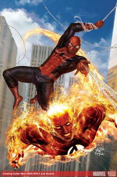 Spider-Man and the Human Torch by In-Hyuk Lee #FF
