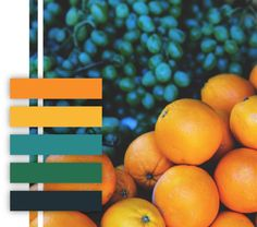 oranges, grapes, color palette, fruit, orange, navy, teal, green, yellow, color scheme