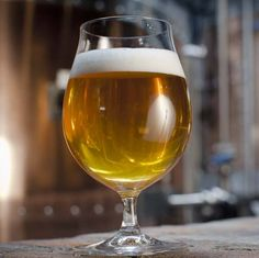Bill's Farmhouse Ale pairs hop bitterness and strength with the character of saison yeast to make a flavorful Belgian farmhouse ale.